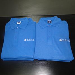 Polo-shirt-ê ji hêla A3-t-shirt printer-WER-E2000T veşartî kir